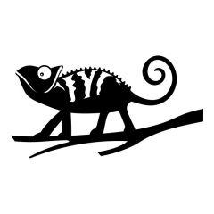 Kameleon op tak