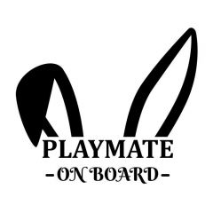 Playmate on board