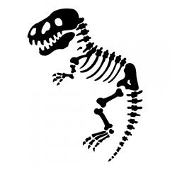 Tyrannosaurus Rex fossiel