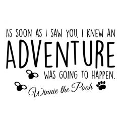 Winnie the pooh - Adventure